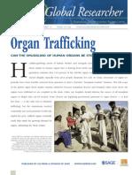 Organ Trafficking Report (3) 1