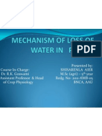 Mechanism of Loss of Water by Plants
