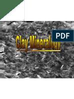16834_ClayMineralogy