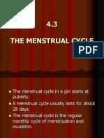 Fertilisation Form3