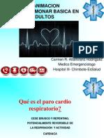 RCP ADULTOS -2012