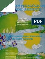 cfakepathmedioambienteblog-100829183807-phpapp01