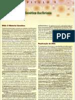 Genética_Bacteriana