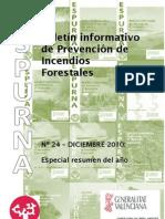 Informe Incendios10 CV