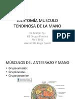Tema 10 Anatomia de La Mano II