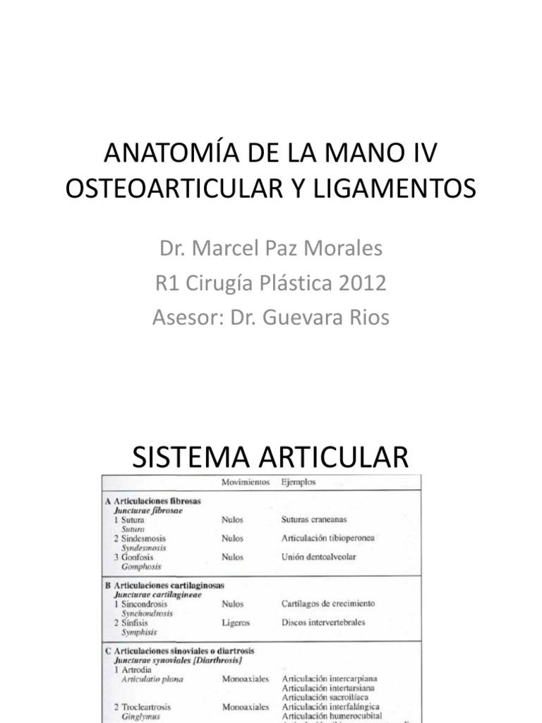 Tema 12 Anatomia de La Mano IV