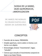 Tema 13 Kinesiologia de La Mano