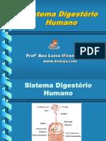 Apres Sistema Digestorio Bioloja