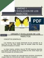 UNIDAD 1 Zoologia