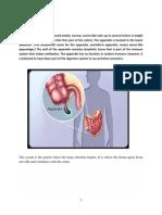 Appendicitis Case Pres