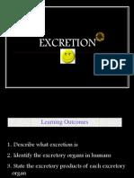 1 Human Excretion