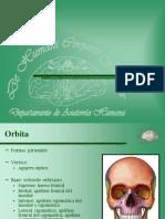 Cavidad Orbitaria e Globo Ocular