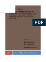A Report on Cotton Growth Pattern