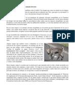 Articulo Una Amenaza Real-pomareda 2012