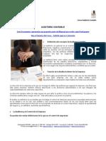 ADM 185 - Auditoria Contable