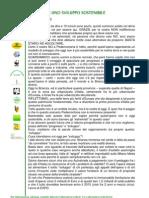 Insieme in Rete - Intervento 30-9-2012