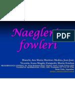 naegleria-fowleri-1222198262403680-9