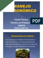 - Manejo Agronomico de Citricos_2