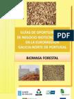 Guia Biomasa Forestal