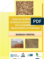 Guia Biomasa Forestal