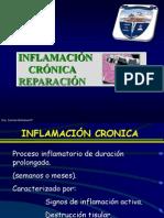 Inflamacion Cronica - Reparacion