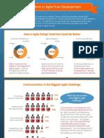 Agile 2012 Survey Infographic