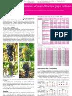 Metabolic characterisation of main Albanian grape cultivars