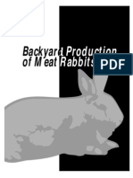 Backyard Rabbits From Pen to Plate
