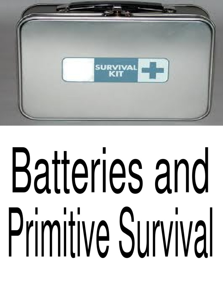 Batteries And Primitive Survival Battery Electricity High Low Alarm For Multiple Circuit Diagram Rechargeable