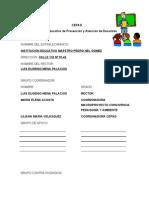 formatoplandeemergencia-101208094920-phpapp02