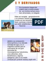 Leche y Derivados1