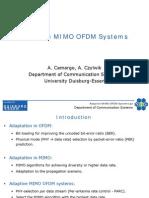 Adaptive MIMO OFDM System