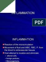 5 Inflammation