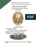 Examen Final Comercializacion de Minerales