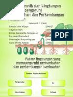 Faktor Genetik Dan Lingkungan Yang Mempengaruhi Pertumbuhan Dan