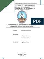 Informe Final Sistemas de Informacion