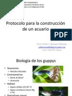 Protocolo para la construcción de un acuario