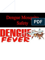 Dengue Mosquito Safety