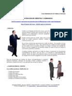 ADM 295 - Administración de Créditos y Cobranzas