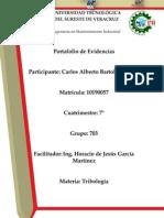 Ing.portafolio