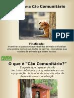 Programa Cão Comunitário