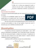 Bioquimica_metabolismo_carboidratos