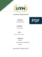 Informe Final Proyecto Jabon