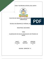 Informe Dulce Chilguacan