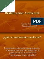 RESTAURACION AMBIENTAL