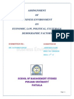 Final Report on Businee Enviernment