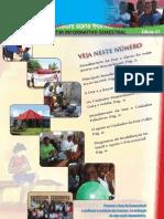 Boletim Informativo Semestral DSF - N. 1 Agosto 2011