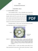 Pembuatan Dan Analisis Biofilm C. Albicans
