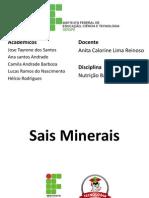 Sais Minerais - ( TAYRONE, HÉLCIO, ANA SANTOS, CAMILA e LUCAS RAMOS )