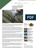 Konsep Sederhana Ramah Lingkungan Di Bali_ Bambu